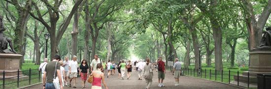 The Mall & Literary Walk