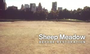 Sheep Meadow Before Restoration